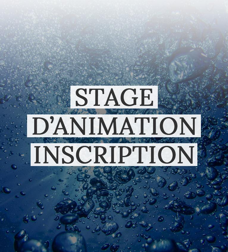 IMAGE-UNE-stage-animation-inscription