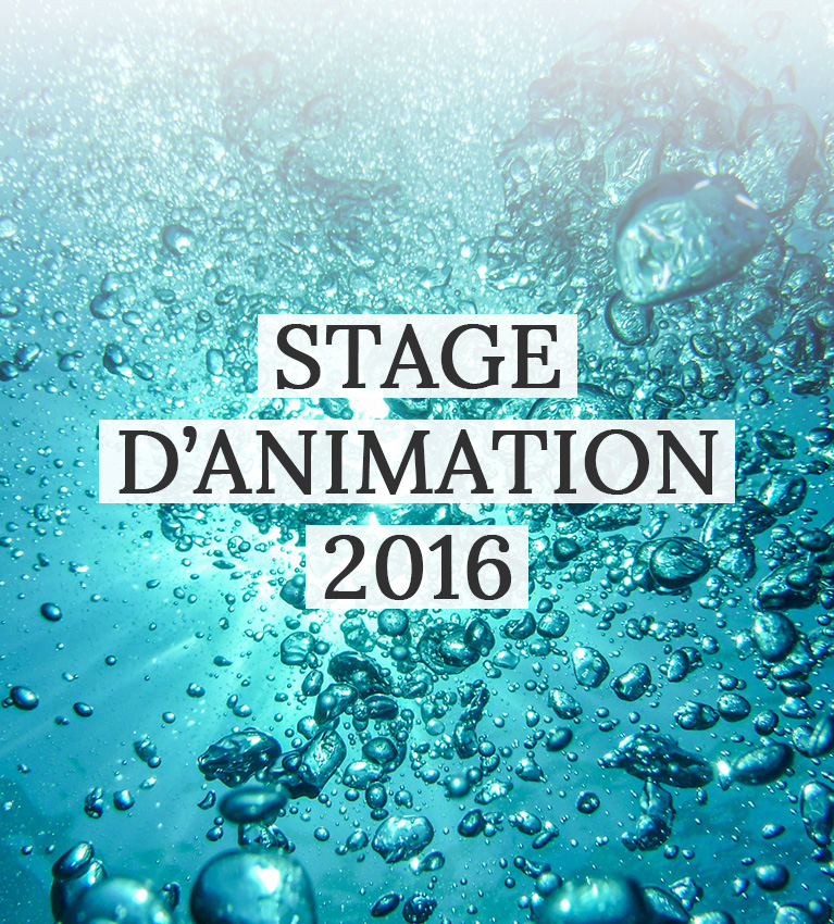 IMAGE-UNE-stage-animation-2016